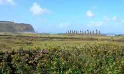 Imagen Rapa Nui