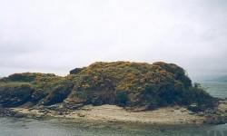 Imagen Castillo de San Carlos
