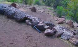 Imagen Bosque Petrificado y yacimiento de huesos de dinosaurio