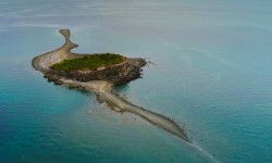 Imagen Isla Kaikué-Lagartija