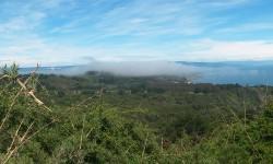 Imagen Península de Hualpén