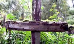 Imagen Isla de Los Muertos