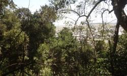 Imagen Cerro Colo Colo