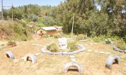 Imagen Fuerte de Lota